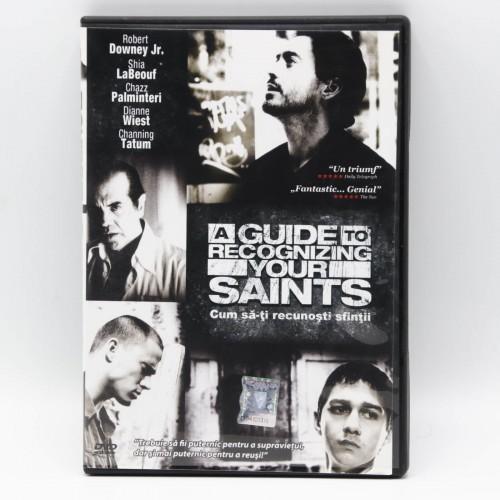A guide to recongnizing your Saint / Cum sa-ti recunosti sfintii - DVD